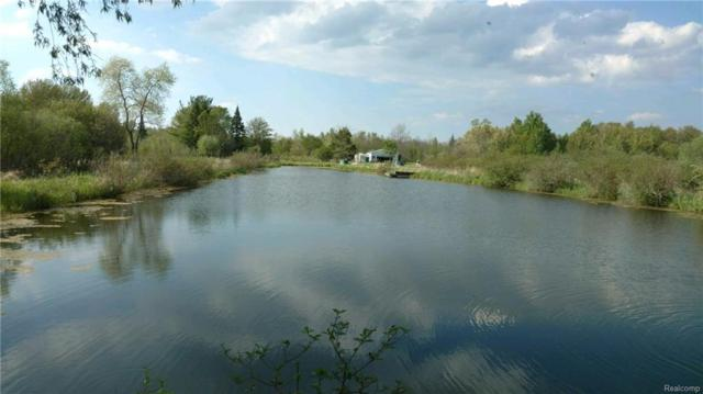 4676 E Black River Road, Alcona Twp, MI 48721 (#218012765) :: RE/MAX Classic