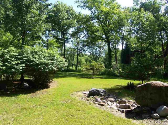 Cedar Glen, Woodstock Twp, MI 49230 (MLS #56031340285) :: The Toth Team
