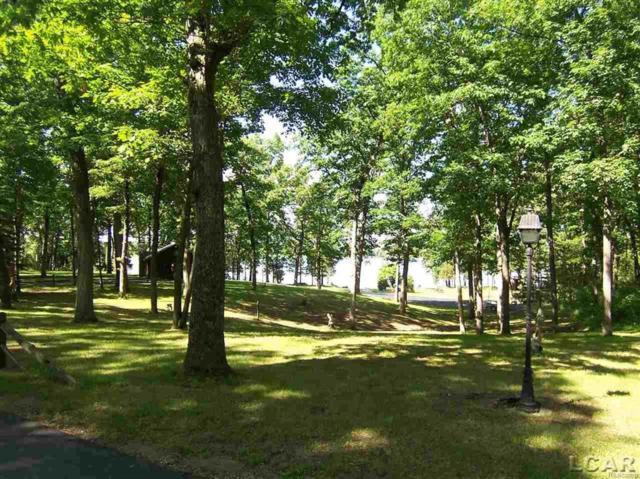 Cedar Glen, Woodstock Twp, MI 49230 (MLS #56031340289) :: The Toth Team