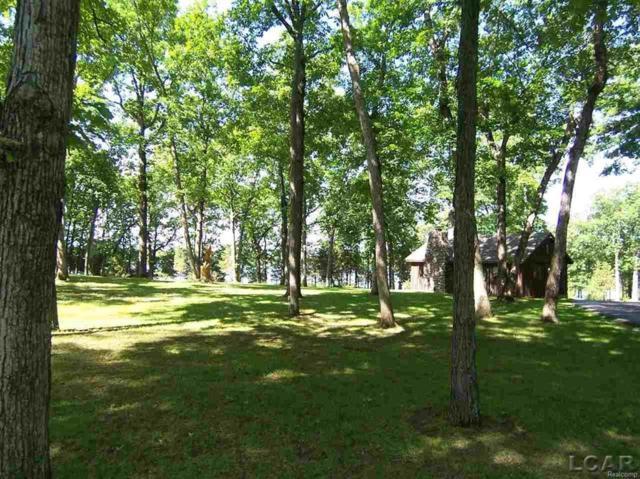 Cedar Glen, Woodstock Twp, MI 49230 (MLS #56031340290) :: The Toth Team