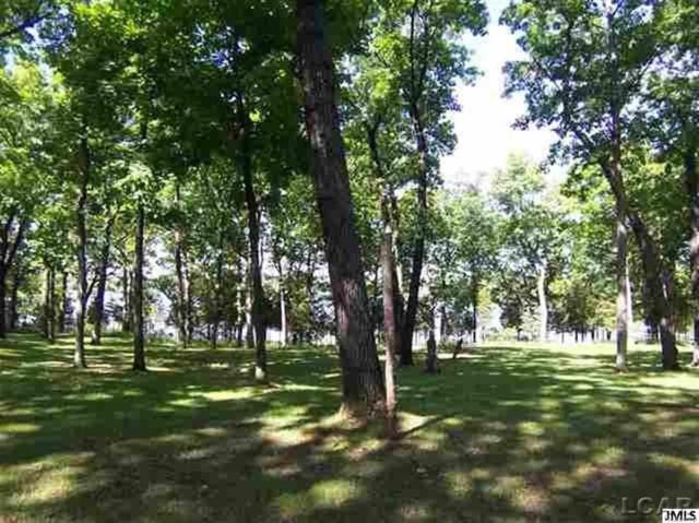 Cedar Glen, Woodstock Twp, MI 49230 (MLS #56031340295) :: The Toth Team
