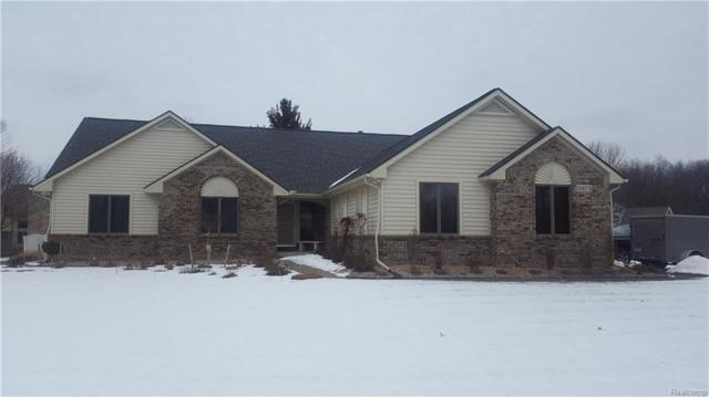 13479 Daleview Court, Green Oak Twp, MI 48178 (#218012985) :: RE/MAX Classic