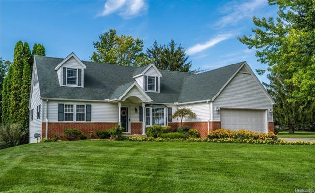 3830 Woodland Drive, Hadley Twp, MI 48455 (MLS #218014397) :: The Toth Team