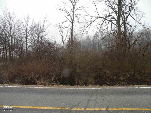 0 Cove - 3.2 Acres, Wales Twp, MI 48027 (#58031340696) :: RE/MAX Nexus