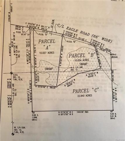 PARCEL B Eagle Road, Rose Twp, MI 48442 (#218014966) :: RE/MAX Nexus