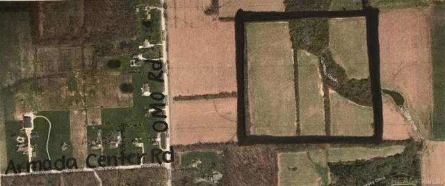 0 Lowe Plank Rd, Richmond Twp, MI 48062 (#58031340838) :: Simon Thomas Homes