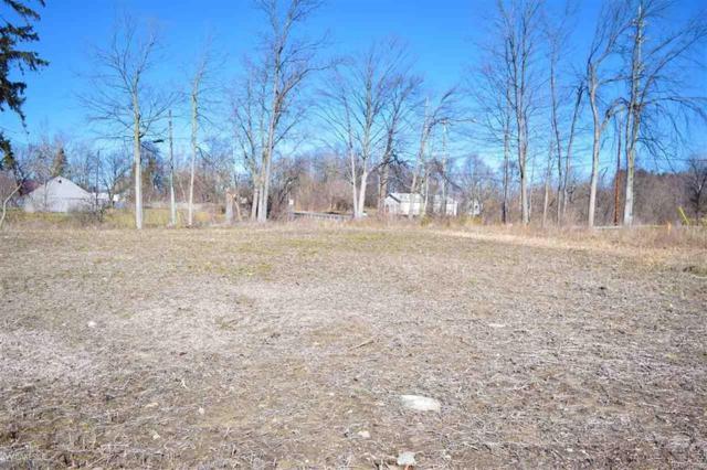 Hollow Corners Road, Almont Twp, MI 48003 (#58031340920) :: Metro Detroit Realty Team | eXp Realty LLC