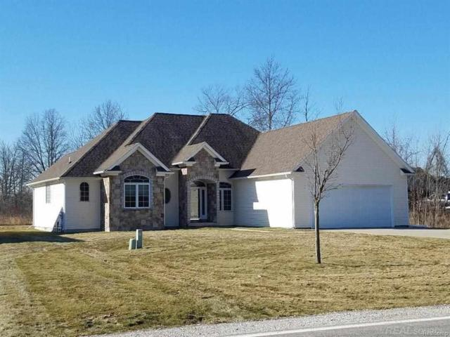 2873 Springborn, East China Twp, MI 48054 (MLS #58031340925) :: The Toth Team