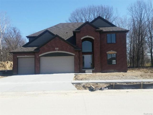 49348 Euphrates Drive, Macomb Twp, MI 48044 (#218015678) :: RE/MAX Nexus