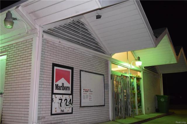 13378 Northline Road, Southgate, MI 48195 (#218015807) :: The Buckley Jolley Real Estate Team