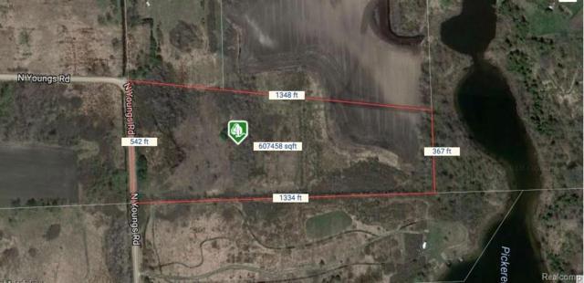 2060 N Youngs Road, Arcadia Twp, MI 48412 (#218015988) :: Duneske Real Estate Advisors