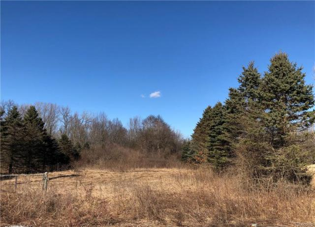 0000 Wanty Road, London Twp, MI 48160 (#218016991) :: The Buckley Jolley Real Estate Team
