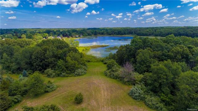 10485 Hadley Rd, Lyndon Twp, MI 48137 (#218017434) :: The Buckley Jolley Real Estate Team