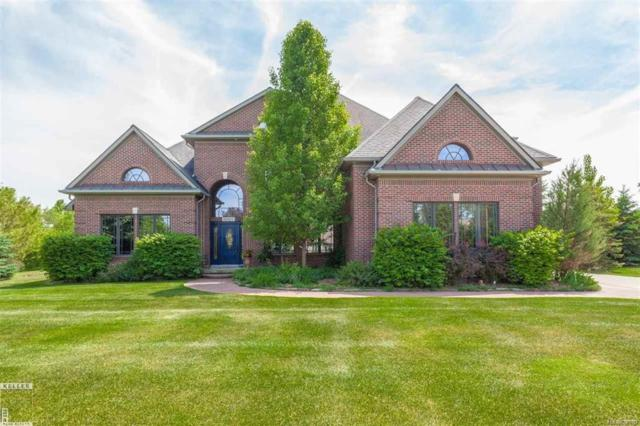 11512 Bayberry, Bruce Twp, MI 48065 (MLS #58031341340) :: The Toth Team