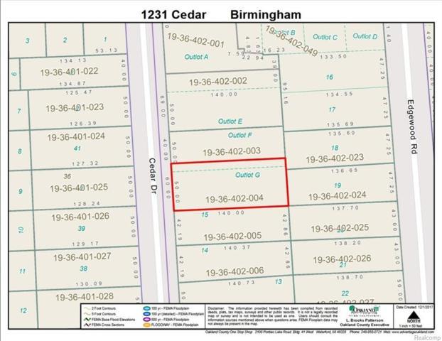 1231 Cedar, Birmingham, MI 48009 (MLS #218017539) :: The Toth Team