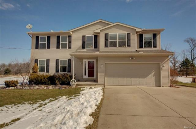 3823 Bull Run, Iosco Twp, MI 48137 (#218018260) :: The Buckley Jolley Real Estate Team