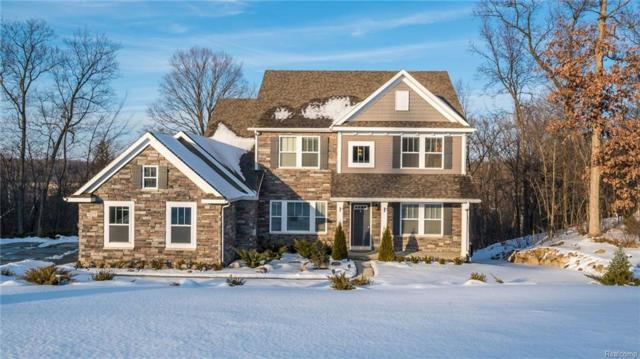 9127 Marsh View Drive, Tyrone Twp, MI 48430 (#218018419) :: The Buckley Jolley Real Estate Team