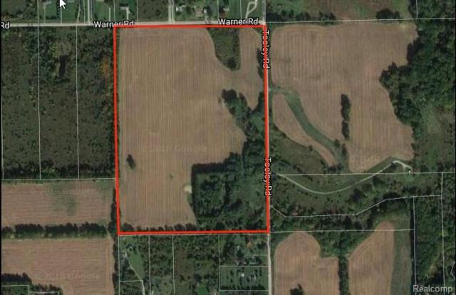 00 Tooley, Howell Twp, MI 48855 (#218018441) :: The Buckley Jolley Real Estate Team