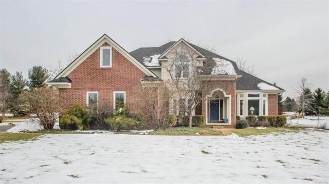 5679 Creekview Drive, Pittsfield Twp, MI 48108 (#543254849) :: The Buckley Jolley Real Estate Team
