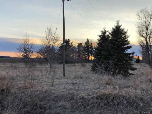 466 E Custer Rd., Custer Twp, MI 48471 (#58031341836) :: Duneske Real Estate Advisors