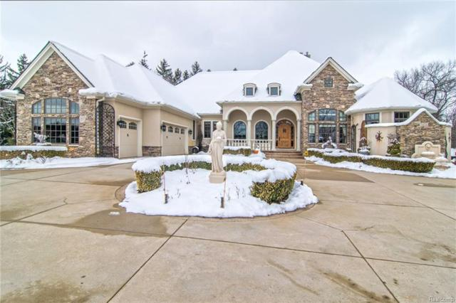 3434 High Hillcrest Drive, Marion Twp, MI 48843 (#218019392) :: The Buckley Jolley Real Estate Team