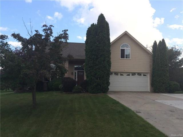 5227 Wyndham Pl, Fenton Twp, MI 48430 (MLS #218019974) :: The Toth Team