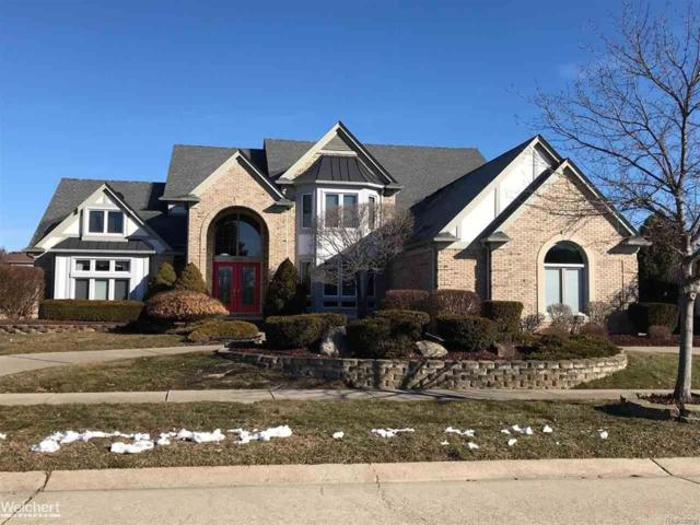 13971 Grouse Ln, Shelby Twp, MI 48315 (#58031342040) :: RE/MAX Vision