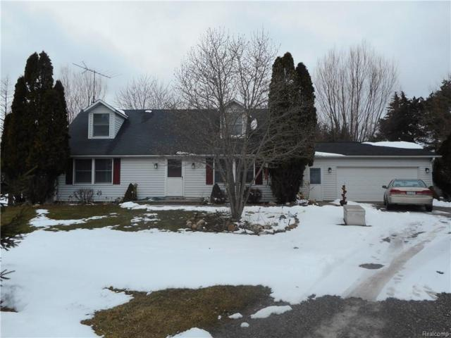 4985 Newark Road, Attica Twp, MI 48412 (#218020547) :: The Buckley Jolley Real Estate Team