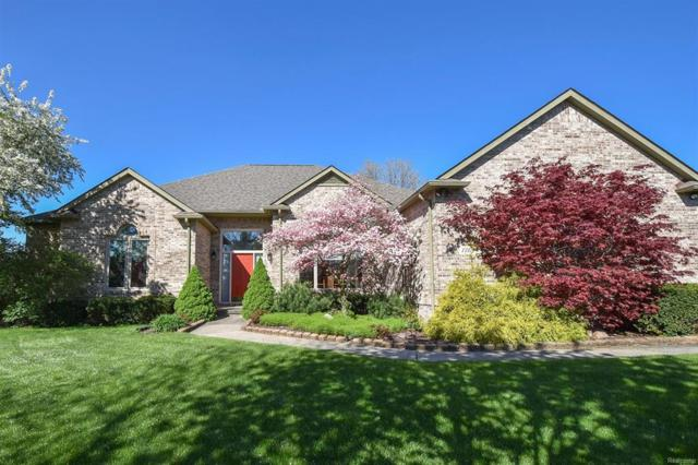 1718 Bent Pine Court, Pittsfield Twp, MI 48108 (#543254979) :: The Buckley Jolley Real Estate Team