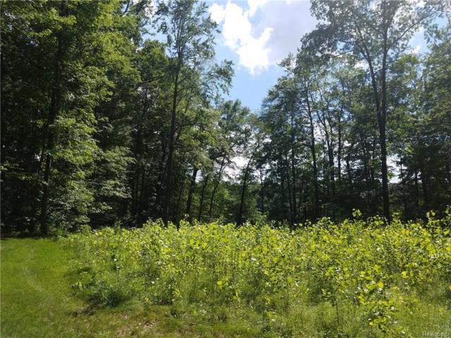 Lot 6 Reynolds Drive, Brighton Twp, MI 48114 (#218021110) :: The Buckley Jolley Real Estate Team