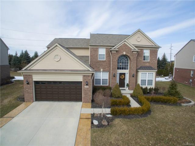 48668 Freestone Drive, Northville Twp, MI 48168 (#218021479) :: Duneske Real Estate Advisors