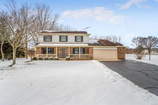 6392 Hollowtree Court, Lodi, MI 48176 (#543254960) :: The Buckley Jolley Real Estate Team