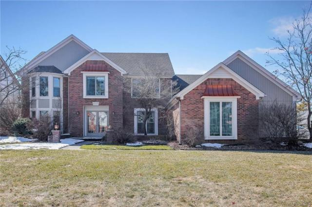 48437 Lake Land Drive, Shelby Twp, MI 48317 (#218021618) :: Simon Thomas Homes