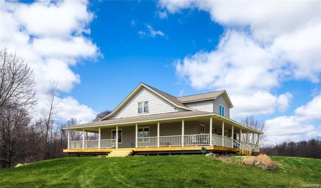3859 Hunters Creek Road, Attica Twp, MI 48412 (#218021923) :: The Buckley Jolley Real Estate Team