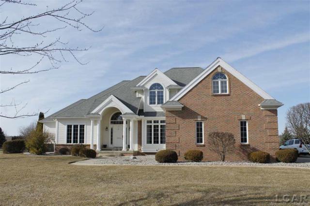 1254 Berkshire Ct, Adrian, MI 49221 (#56031342457) :: Duneske Real Estate Advisors