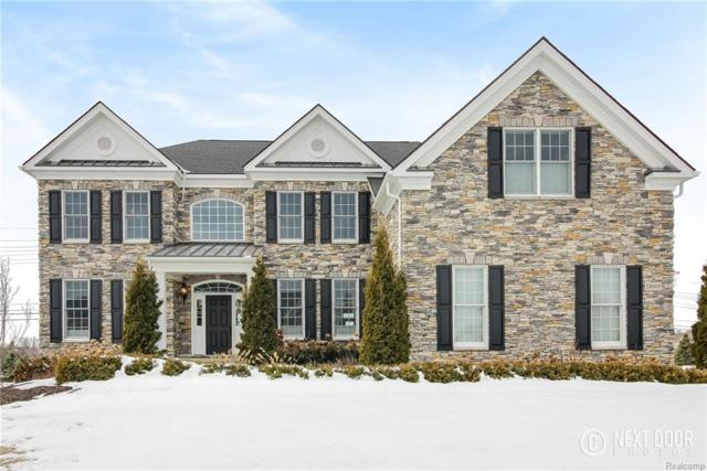 24805 Overlook Trail, Novi, MI 48374 (#218022465) :: Duneske Real Estate Advisors