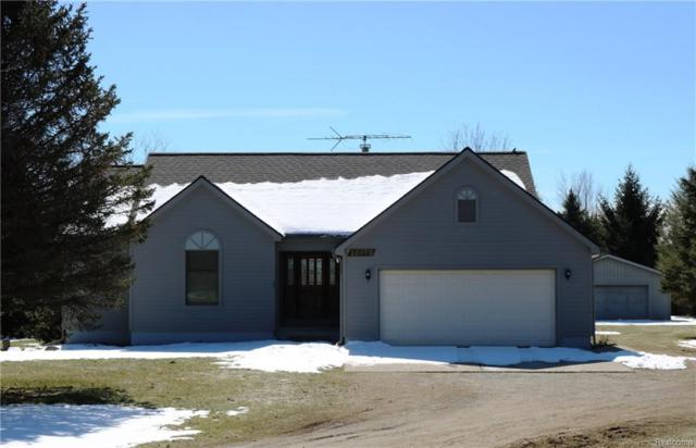20475 Wasson Road, Unadilla Twp, MI 48137 (#218022617) :: The Buckley Jolley Real Estate Team
