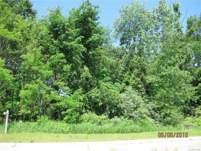 Lot 44 Pebble Creek, Hamburg Twp, MI 48169 (#218022723) :: RE/MAX Classic