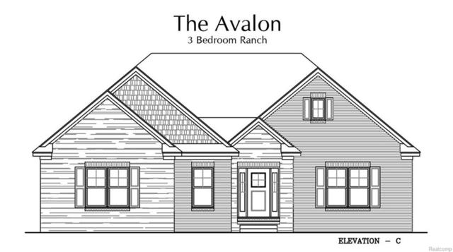 59392 Deer Haven Drive, Lyon Twp, MI 48178 (#218022751) :: The Buckley Jolley Real Estate Team