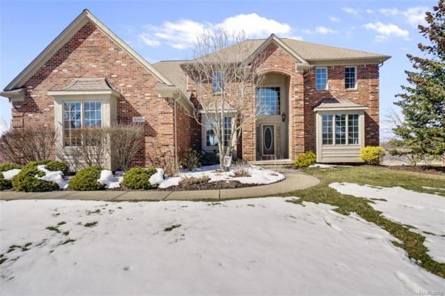 3888 Fawn Drive, Oakland Twp, MI 48306 (#218022896) :: The Buckley Jolley Real Estate Team