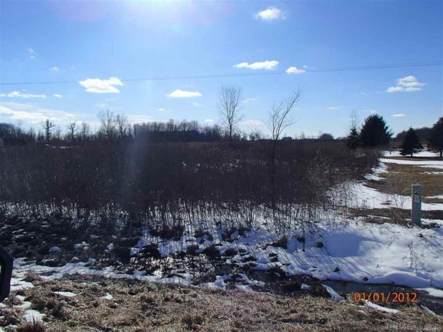 Todd Rd, Croswell, MI 48422 (MLS #58031342742) :: The Toth Team