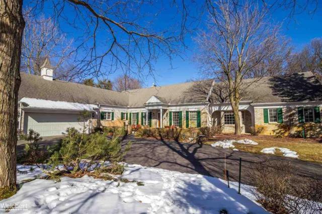 241 Menasha Trl, Orion Twp, MI 48362 (#58031342747) :: Duneske Real Estate Advisors