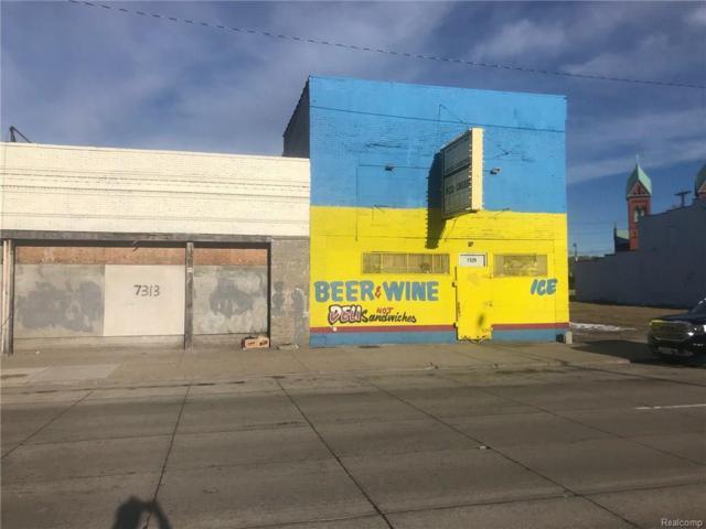7323 Gratiot Avenue, Detroit, MI 48213 (MLS #218023193) :: The Toth Team