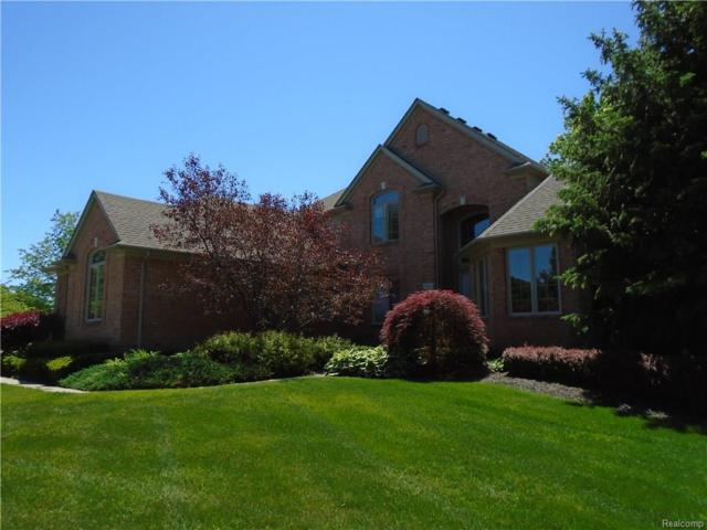 7396 Sparling Drive, Shelby Twp, MI 48316 (#218023748) :: Duneske Real Estate Advisors