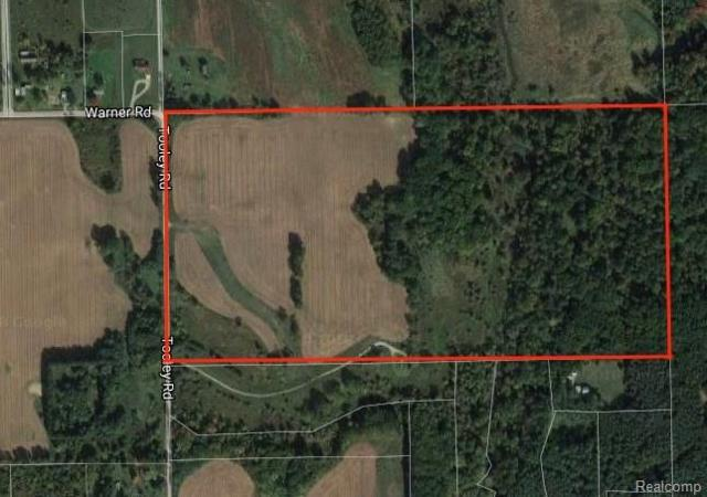 2990 Tooley Road, Howell Twp, MI 48855 (#218023789) :: The Buckley Jolley Real Estate Team