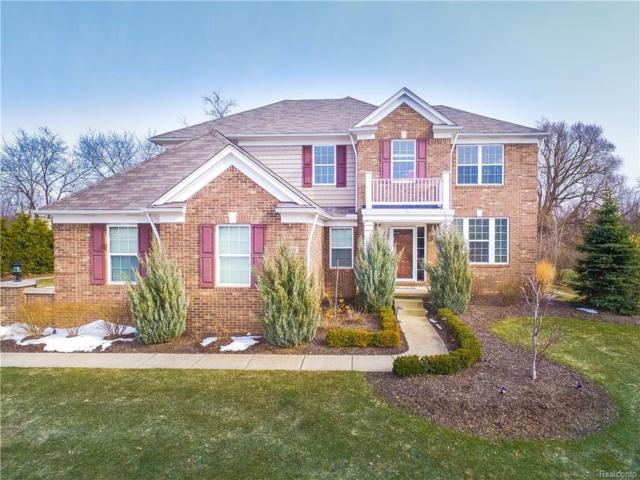 4349 Bluff Pointe, Independence Twp, MI 48348 (MLS #218024187) :: The Toth Team