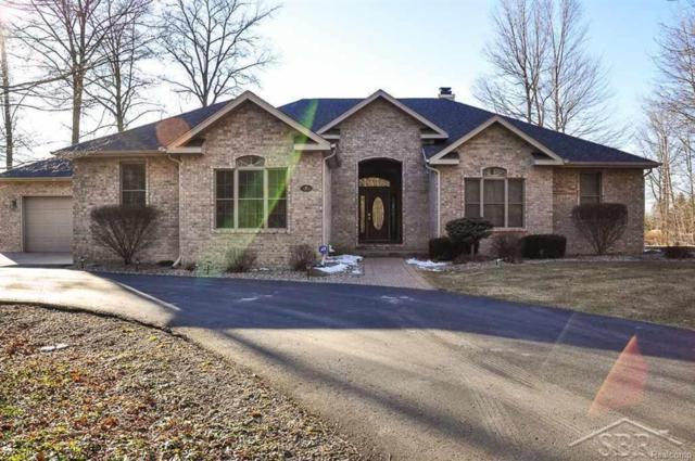 8 Clear Lake Drive, Fremont Twp, MI 48626 (#61031343080) :: Duneske Real Estate Advisors