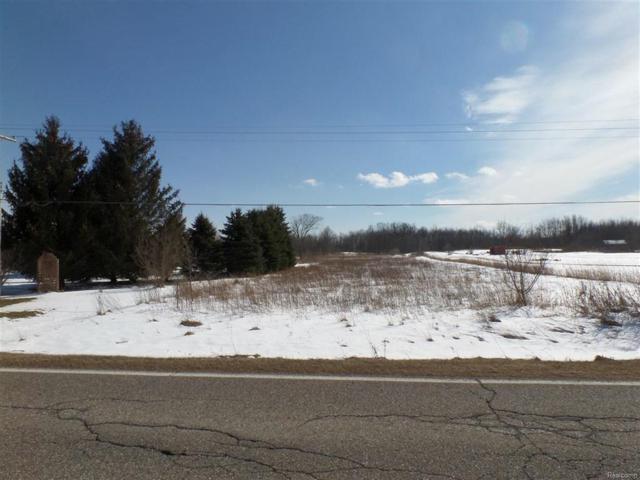 2205 Lake Pleasant, Arcadia Twp, MI 48412 (#50100001126) :: Duneske Real Estate Advisors
