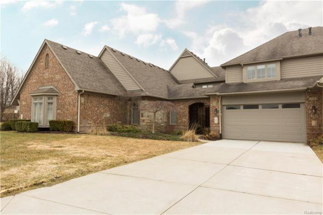 10840 Sparkling Waters Court, Green Oak Twp, MI 48178 (#218025644) :: The Mulvihill Group