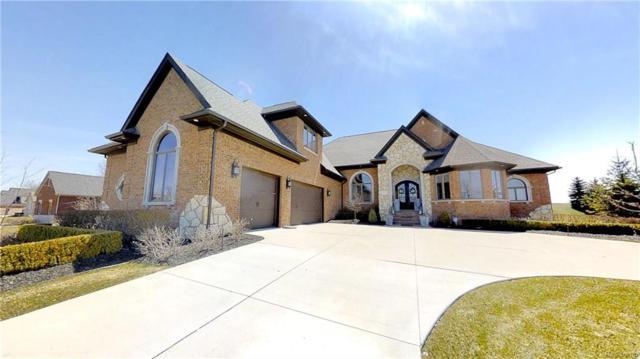52797 Trailwood Drive, Lyon Twp, MI 48178 (#218025775) :: Duneske Real Estate Advisors